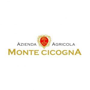 Monte Cicogna